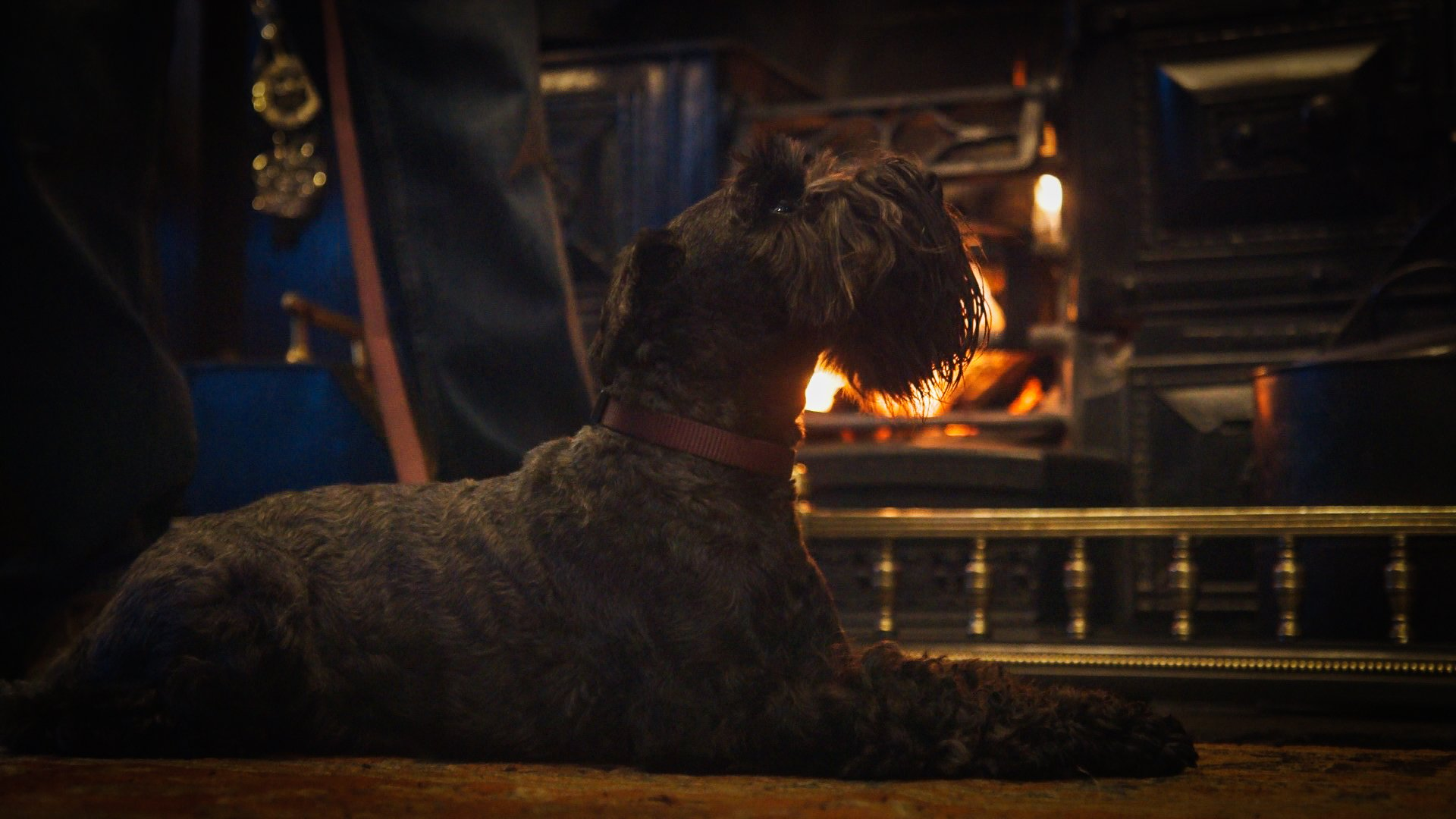 The bar is cosy and dog friendly