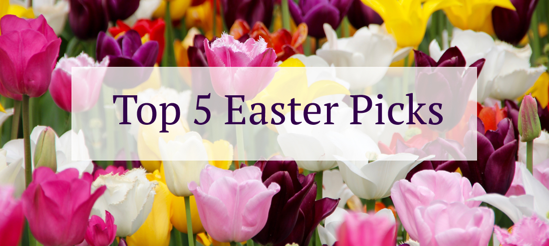 Top5-Easter-Picks